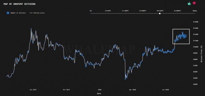 bitcoin felhamlmozás halmozó tárcák kriptopénz mycryptoption