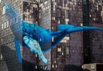 5 Ethereum token, amelyet éppen nagyban vásárolnak a bálnák