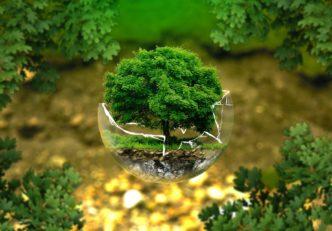 A Világgazdasági Fórum szerint a blokklánc lehet a környezetvédelmi fenntarthatóság kulcsa